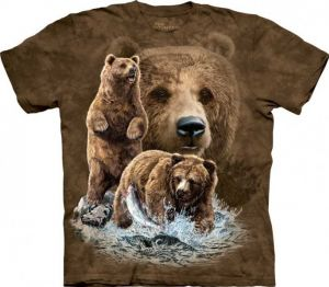 Koszulka  The Mountain - Find 10 Brown Bears